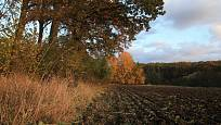 procházka podzimní krajinou