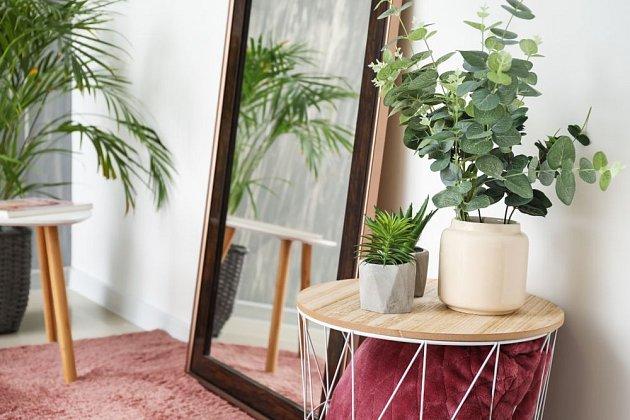 Rostlinám umístěným od okna dále může pomoci i odraz světla v zrcadle