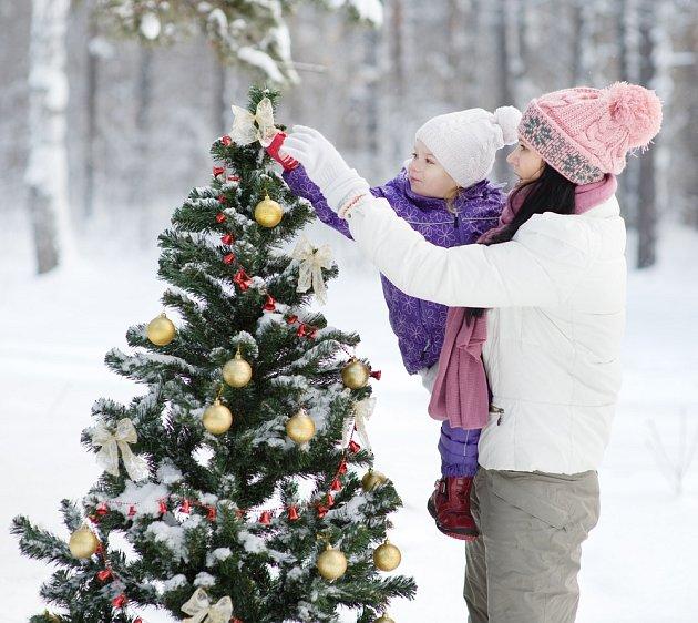 Vánoční stromek venku