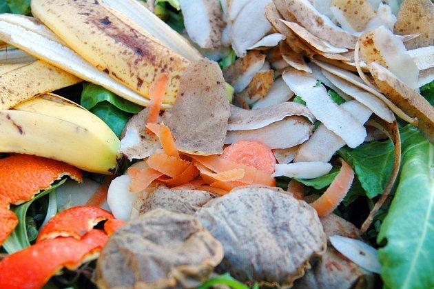 Zbytky čaje patří do bio odpadu