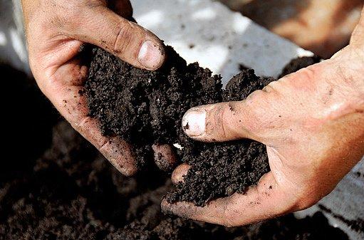 úrodnost půdy zvyšují organická hnojiva