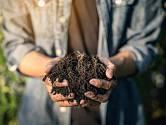 I malé zahrady potřebují kompostrér. Zjistěte na co pamatovat při jeho výrobě.