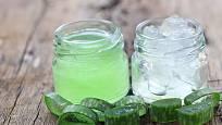 Čerstvý gel z Aloe vera je také vhodný na zklidnění pokožky po holení.