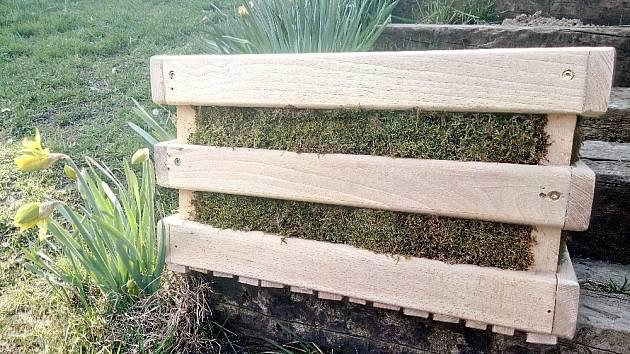 Dřevěnou bedýnku vyplníme po obvodu mechem.