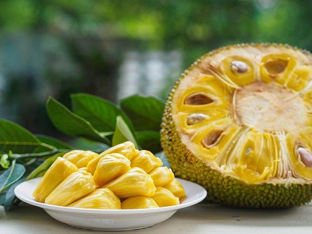 Když jackfruit otevřeme, najdeme v něm množství žlutých dílků s jemně gumovitou strukturou.