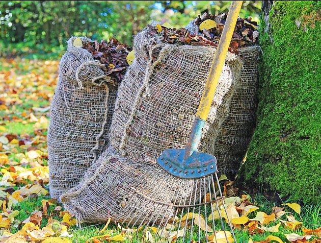 Listí je cenný dar stromů