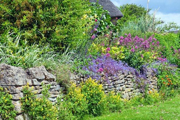 Suchá zídka a pestrá paleta rostlin, krásné na pohled a ideální pro hmyz i ještěrky