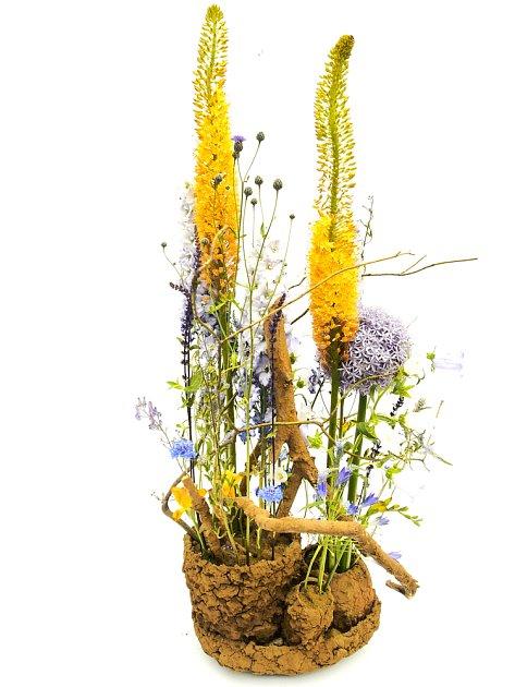 Eremurus si pro postupné nakvétání oblíbili také floristé.