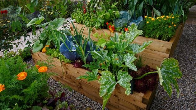 Vyvýšené záhony umožňují pracovat na zahradě s menší námahou