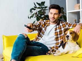 Někdy to vypadá, že televizní program psa baví.