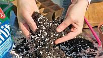 Zahradnický substrát promísíme s perlitem