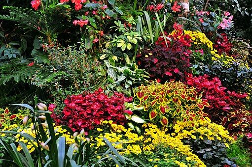 Pro stále krásnou zahradu