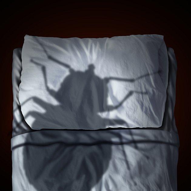 V posteli musíte se štěnicemi ještě alespoň pár dní vydržet...