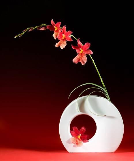 Ikebana má dlouhou tradici.