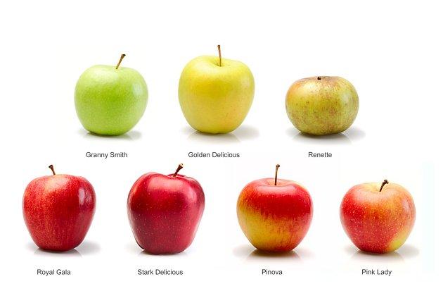 Jablka mají nejen různé tvary, ale i barvu v době zralosti.