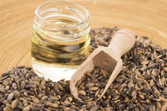 Ze semen ostropestřece se lisuje léčivý olej
