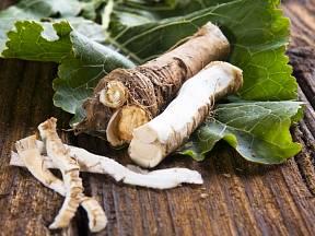Štiplavá a velmi silně aromatická vůně křenu je fajn!