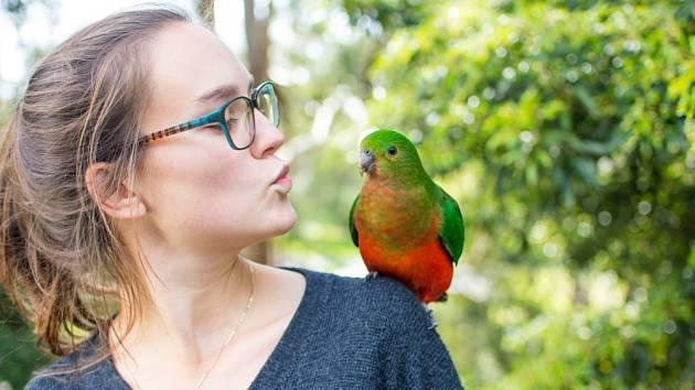 Mluvící papoušek nemá rád samotu.