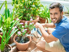 Skvělou výživu všem rostlinám dodá hnojivo z droždí.