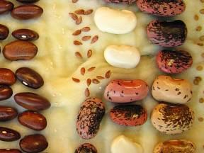 Mezi semeny ponecháme místo, při klíčení nabobtnají.