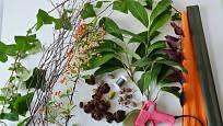 Potřeby pro výrobu podzimního věnce