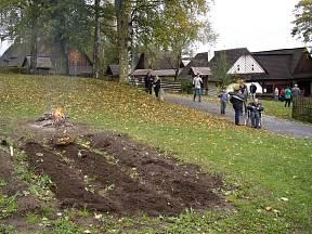 Ke sklizni brambor patří i pečení na ohníčku.