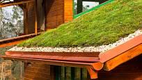 Dřevěný dům s extenzivní zelenou střechou.