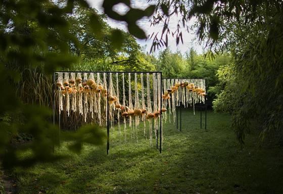 Podzimní dekorace z dýní a provazů.