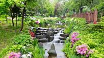 Potok v zahradě přinese mnoho radosti nejen dětem, ale i mnoha druhům vodních živočichů.