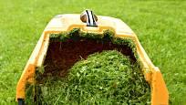 Posekanou trávu uložíme do kompostu nebo zaryjeme.