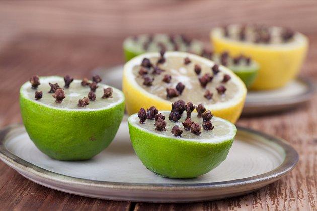Vůně citrusových plodů je pro lidi příjemná, pro hmyz odpuzující.