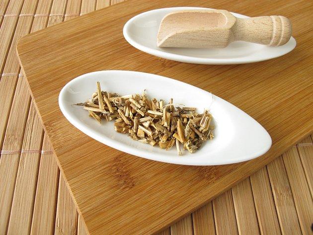 Sušený oddenek pýru plazivého