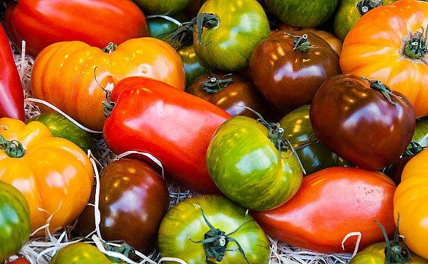 různé odrůdy rajčat