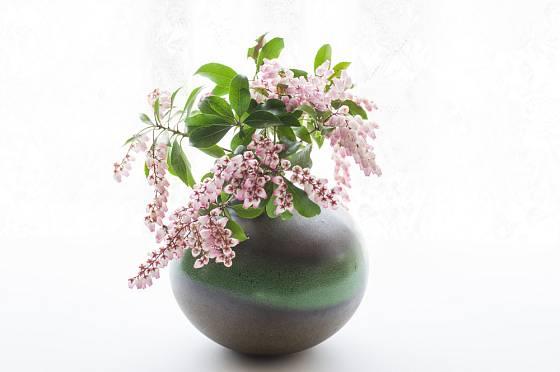Květy pierisu vypadají impozantně i ve váze.