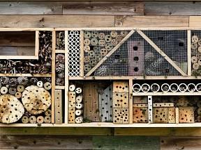 Jednoduchý návod, jak si na zahradě zařídit vlastní jednoduché úly
