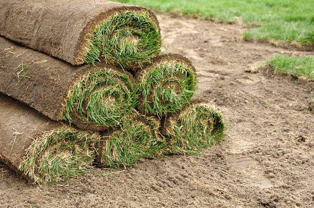 Zakládání trávníku z pásů je rychlé, ale drahé.