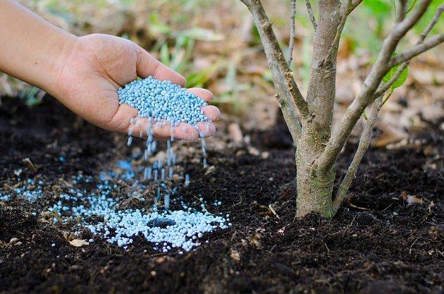 Na podzim jsou pro hnojení vhodná hnojiva bohatá na draslík.