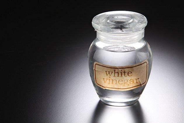 bílý ocet
