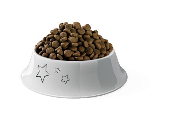 Dobře zvolené granule chrání i chrup a prospívají srsti a kůži.