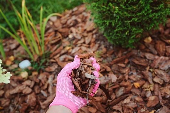 Mulč ze štěpky se hodí do okrasné zahrady