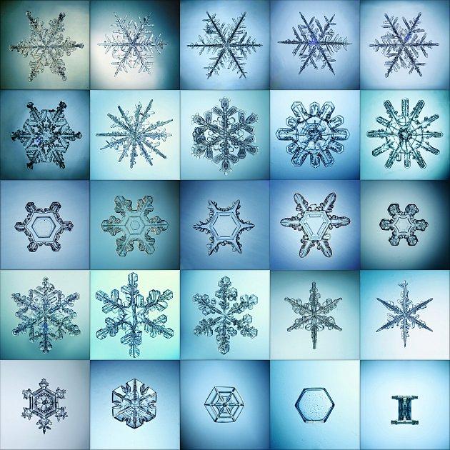 Tvary sněhových vloček jsou opravdu velmi rozmanité.