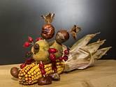 Kaštaňák 2019 - kukuřičný klas, brambory, šípky, bukvice, kaštany, olšové šišky