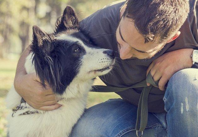 Psi s přátelskou a bezstarostnou povahou jsou výborní společníci a chůvy malých dětí.