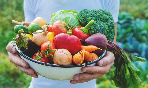 V červenci je sklizeň pěstované zeleniny a ovoce v plném proudu.