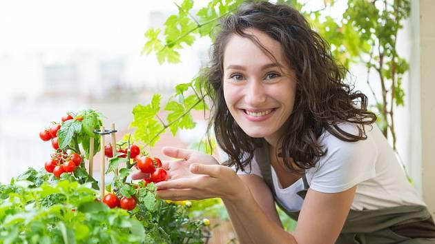 Kombinujte byliny s rajčaty a zjistěte si jak se rostliny vzájemně ovlivňují.