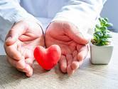 O srdce bychom měli pečovat.