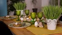 Jarní svěže zelení osení patří i na sváteční stůl.