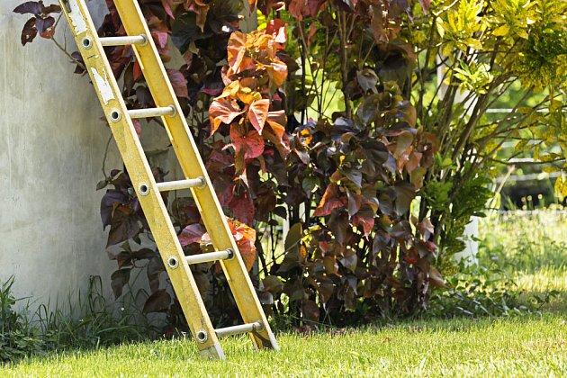 Žebřík zapomenutý v zahradě je poukázka na problém