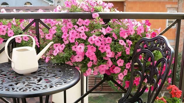Léto je tady a květiny prahnou po pravidelném přísunu vody.