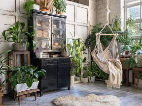 Udělejte si doma přírodní oázu, která vyžene z vaší domácnosti úzkost, depresi či stres